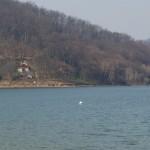 Lacul Surduc 3