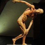 Our Body_13