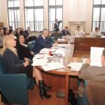 sedinta consiliu local_05