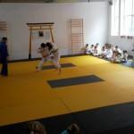 judo phoenix (1)