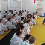 judo phoenix (7)