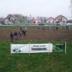 plantare copaci voluntari (11)