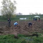 plantare copaci voluntari (9)