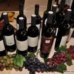 vinofest 03
