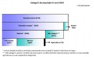 economie categorii 2015