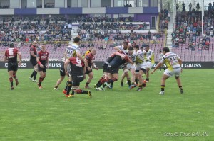 rugby saracens calvisano challenge cup_29