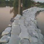 inundatii gataia (6)