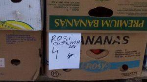 rosii-3