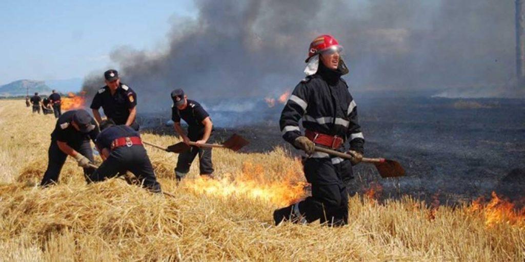 Incendii de vegetatie uscata