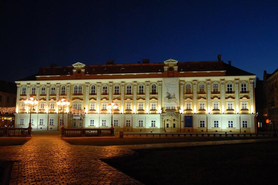 Muzeul-de-Arta-5