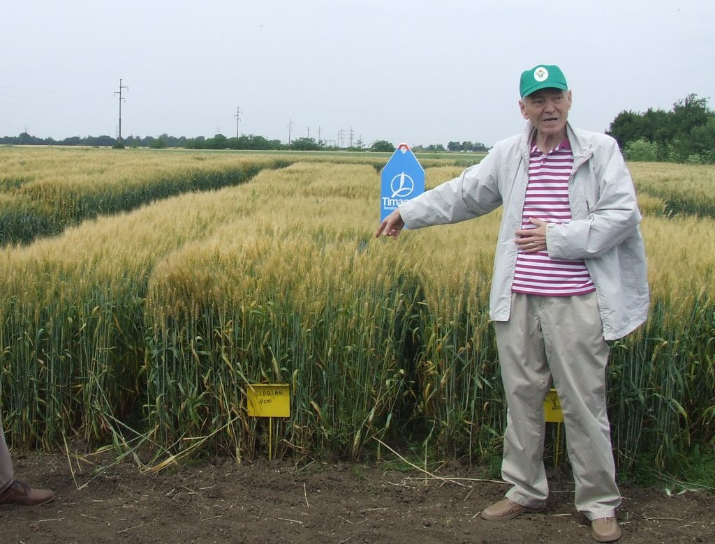 esecul PAC si agricultura din timis DSCF6867