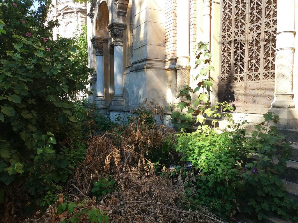 sinagoga fa bric (23) - Copy