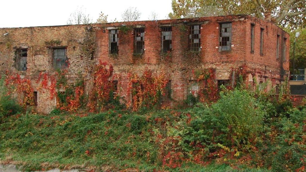 Ruine socialiste mal Bega 3