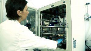 OncoGen locul unde se tipăresc la imprimantă 3D viitoarele celule ce ne vor cârpi organismul bolnav — .Still054