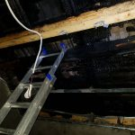 caine incendiu casa giroc (7)