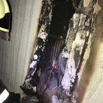 caine incendiu casa giroc (8)