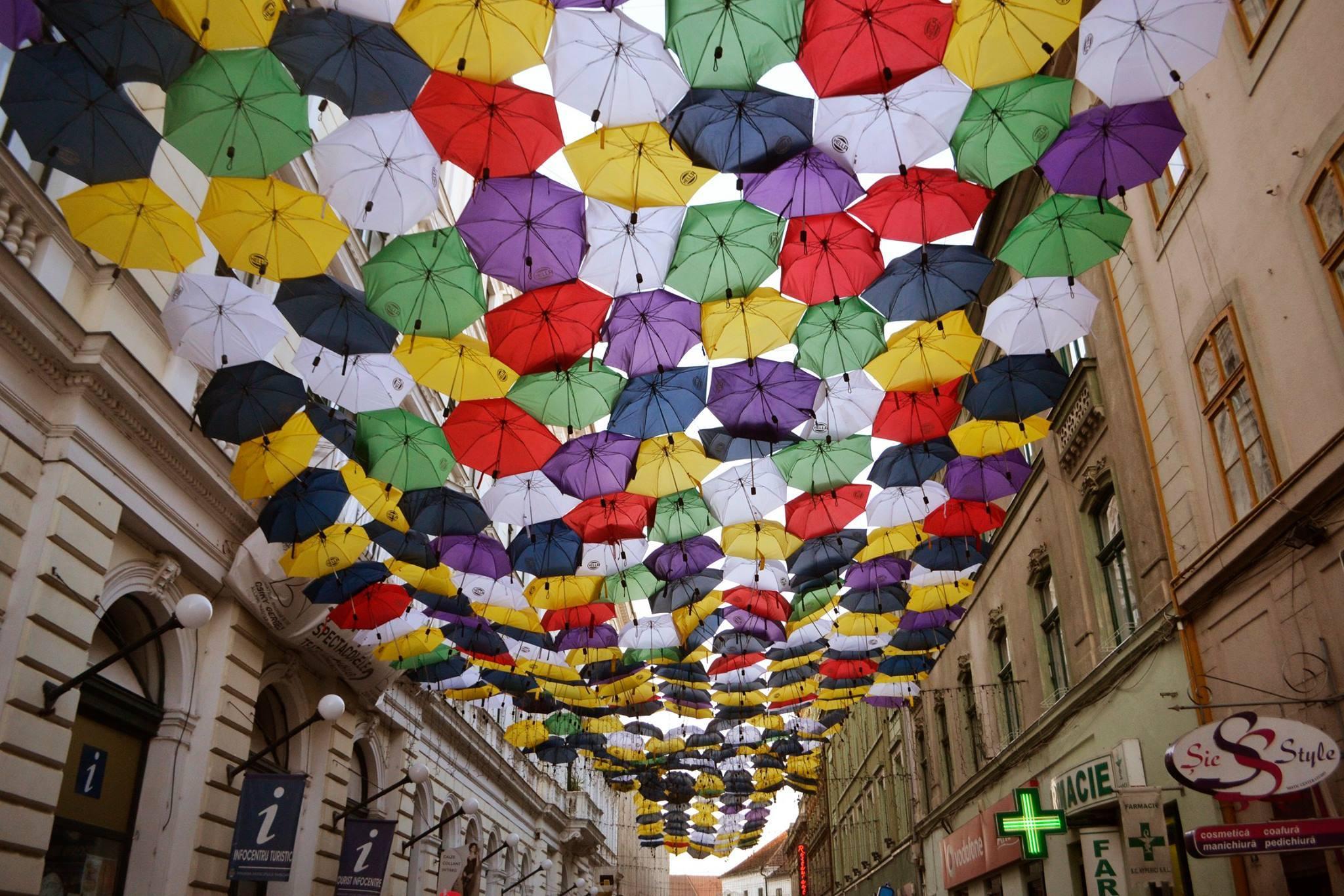 Sute De Umbreluțe Colorează și în 2019 Timișoara Când Apar Pe Alba